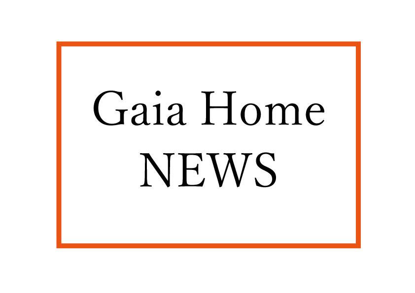 ガイアホーム ニュース